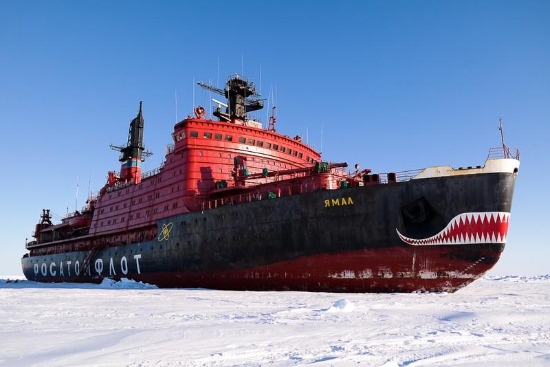 Россия 1 санкт-петербург и ленинградской области новости